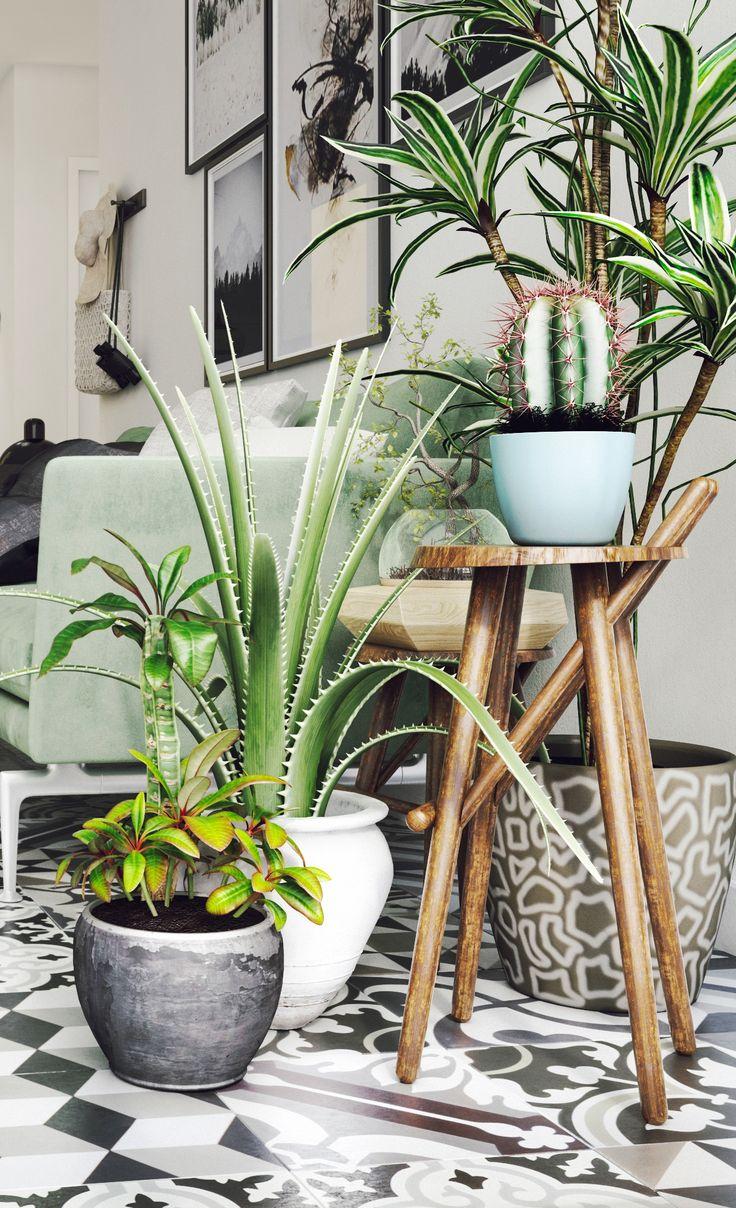 Комнатные растения в стиле ретро