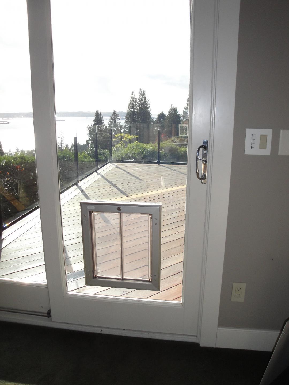 квадратная двустворчатая дверца в пластиковой двери